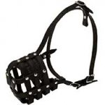 Walking and Training Leather Cage Riesenschnauzer Muzzle
