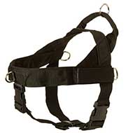 Riesenschnauzer Harness Nylon with Patches