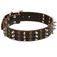 Riesenschnauzer Spikes and Studs Rows Leather Dog Collar