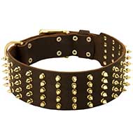 Wide Spiked Leather Riesenschnauzer Collar