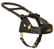 Guide and Assistance Leather Riesenschnauzer Harness