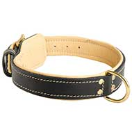Padded Leather Riesenschnauzer Collar