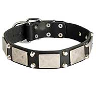 Leather Riesenschnauzer Collar Decorated with Nickel Cones and Plates