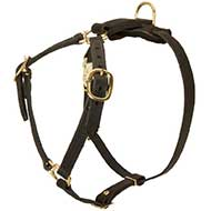 Y-Shaped Leather Riesenschnauzer Harness for Tracking and Training