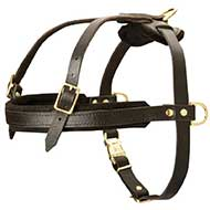 Leather Riesenschnauzer Harness for Tracking and Pulling