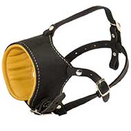Snout Short Leather Riesenschnauzer Muzzle Padded with Nappa Leather