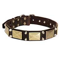 Leather Riesenschnauzer Collar with Studs and Plates
