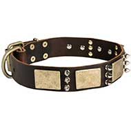 Designer War-Style Leather Riesenschnauzer Collar with Spikes and Plates