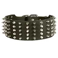 Riesenschnauzer Leather Collar Spiked and Studded