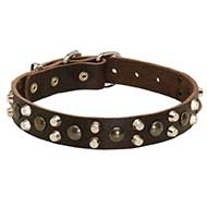 Leather Riesenschnauzer Collar With Studs and Pyramids