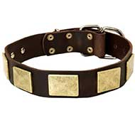 Handcrafted Leather Riesenschnauzer Collar With Vintage Massive Plates