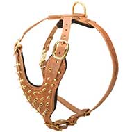 Brass Spiked Leather Riesenschnauzer Harness for Fashion Walking