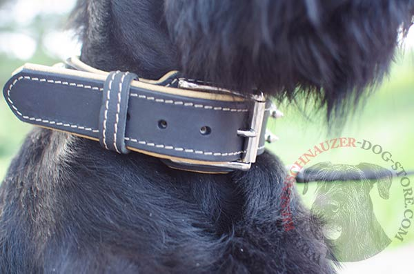 Spiked collar padded with soft to the touch Nappa leather