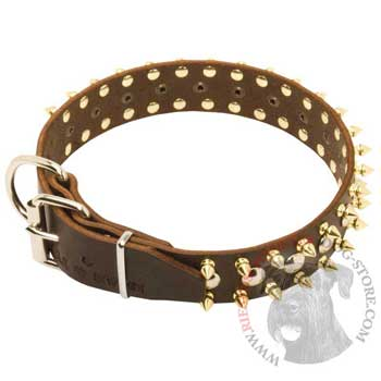 Leather Riesenschnauzer Collar with Rust-proof Decoration