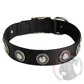Riesenschnauzer Dog Nylon Collar Awesome Design