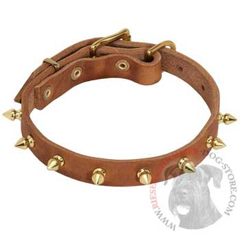 Designer Leather Collar for Riesenschnauzer