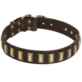 Leather Riesenschnauzer Collar Designer for Walking in Style