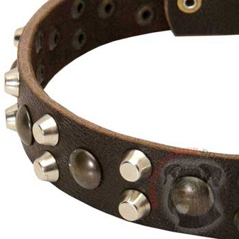 Leather Riesenschnauzer Collar with Hand Set Studs