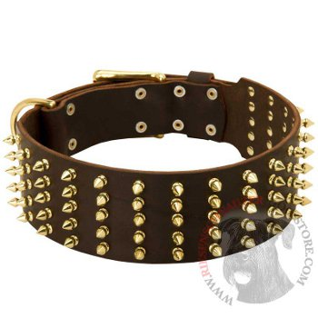 Leather Riesenschnauzer Collar with Solid Buckle and D-ring
