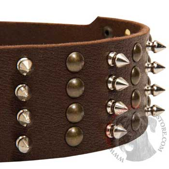 Riesenschnauzer Leather Collar with Rust-proof Fittings