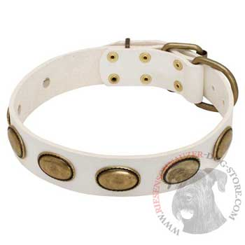 White Leather Riesenschnauzer Collar with Vintage Oval Plates