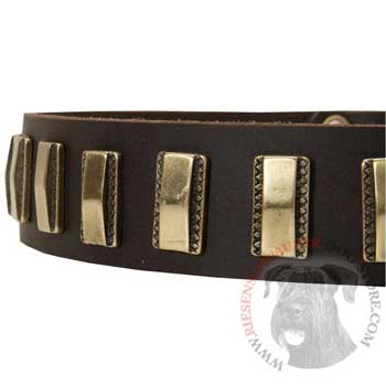 Leather Dog Collar with Adornment for Riesenschnauzer