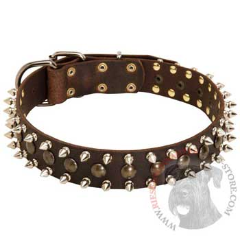 Riesenschnauzer Leather Collar with Stylish Decoration