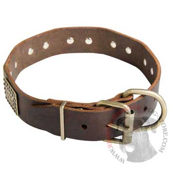 War-Style Leather Collar for Riesenschnauzer