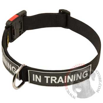 Nylon Riesenschnauzer Collar With ID Patches