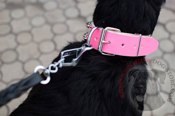 Long servicing leather collar with non-corrosive hardware