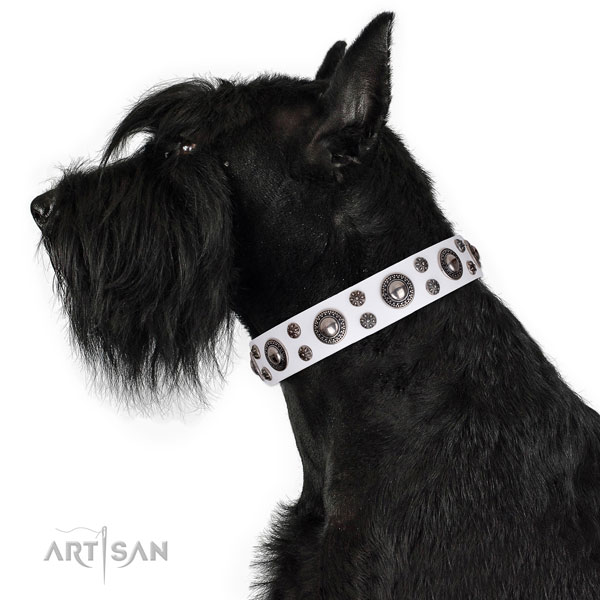 Comfortable wearing decorated dog collar of top quality natural leather