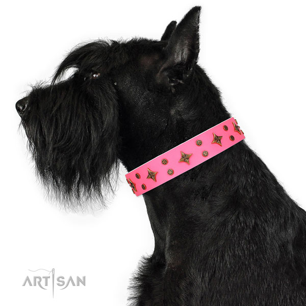 Handy use embellished dog collar of durable material