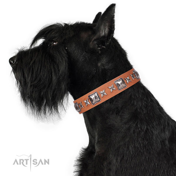 Handy use decorated dog collar of top notch material