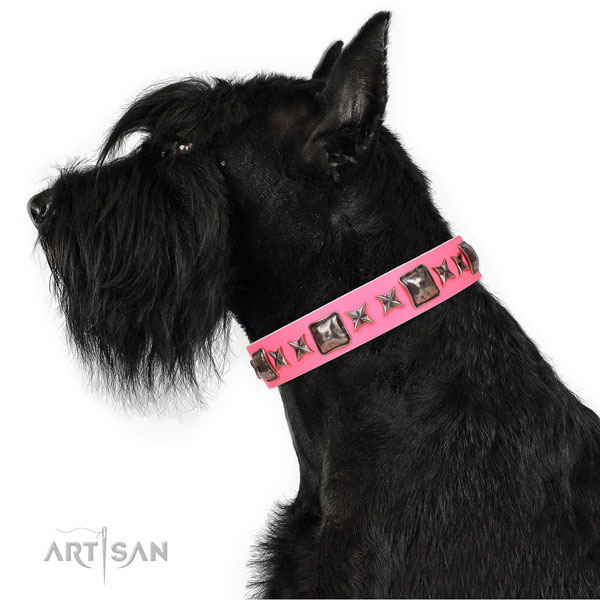 Exquisite decorated genuine leather dog collar for everyday walking