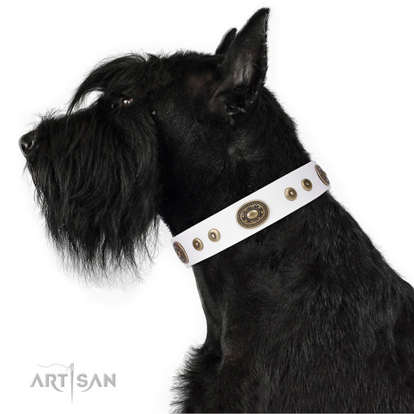 Stunning embellished genuine leather dog collar for walking