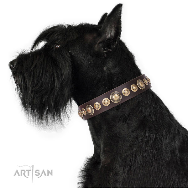 Stylish studded natural leather dog collar