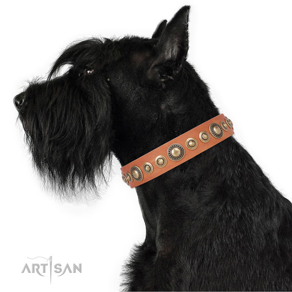 Reliable buckle and D-ring on natural leather dog collar for stylish walks