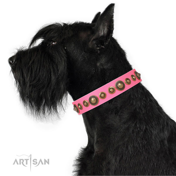 Rust-proof buckle and D-ring on natural leather dog collar for stylish walking