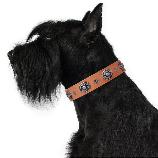 Leather dog collar with corrosion resistant buckle and D-ring for handy use