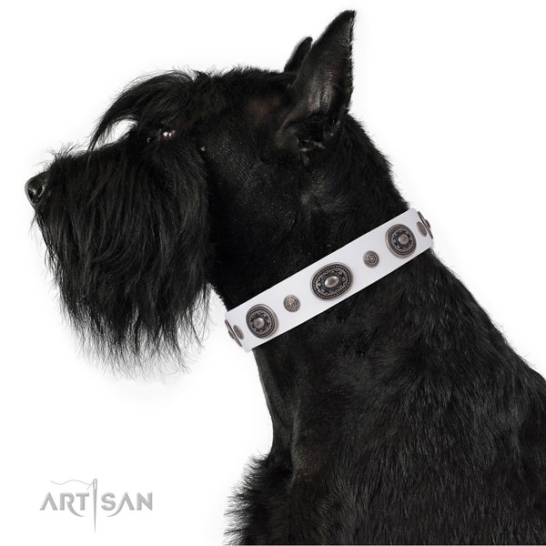 Natural leather dog collar with reliable buckle and D-ring for everyday walking