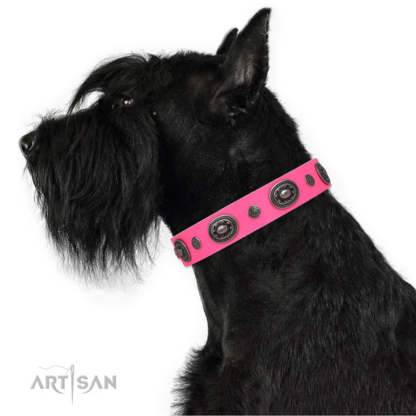 Genuine leather dog collar with corrosion resistant buckle and D-ring for everyday use