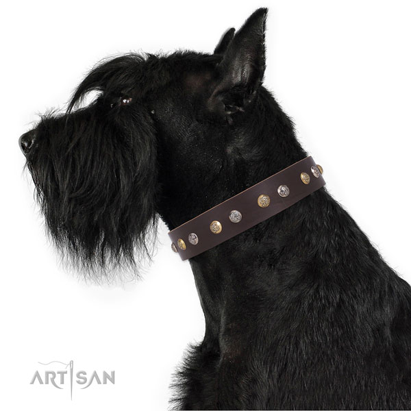 Leather dog collar with corrosion proof buckle and D-ring for stylish walking