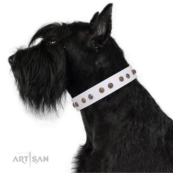 Leather dog collar with rust resistant buckle and D-ring for comfy wearing