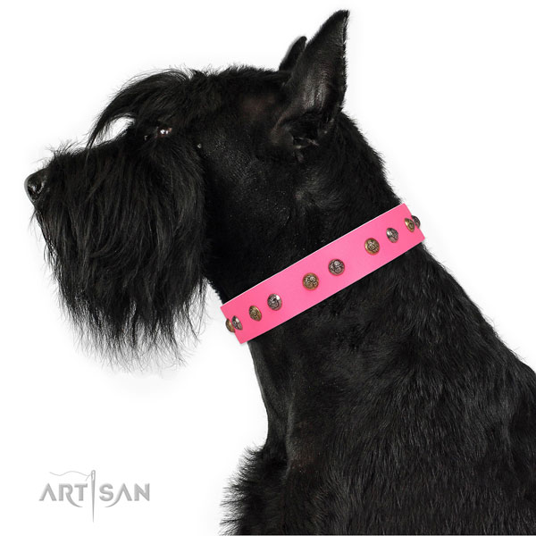 Daily walking adorned dog collar made of top rate leather