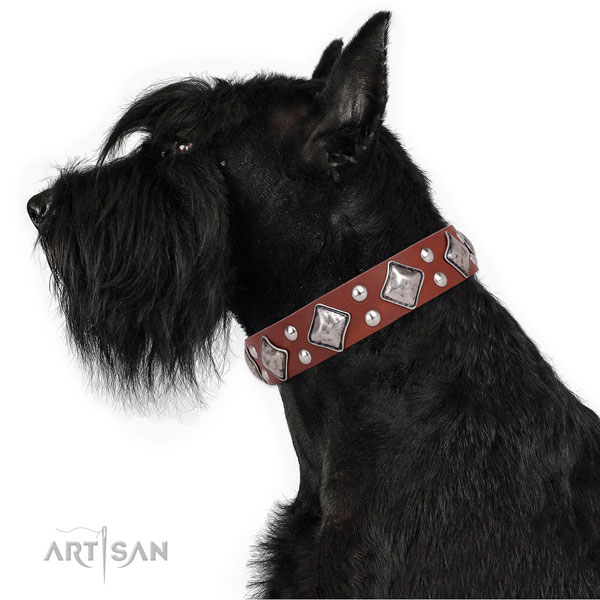 Comfortable wearing embellished dog collar made of top rate genuine leather