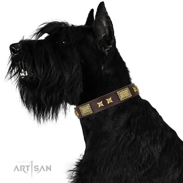 Easy wearing dog collar with inimitable studs