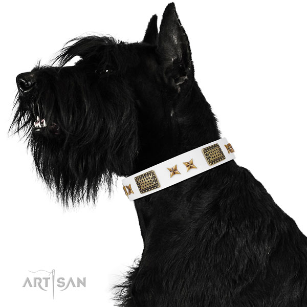 Handy use dog collar with exceptional decorations