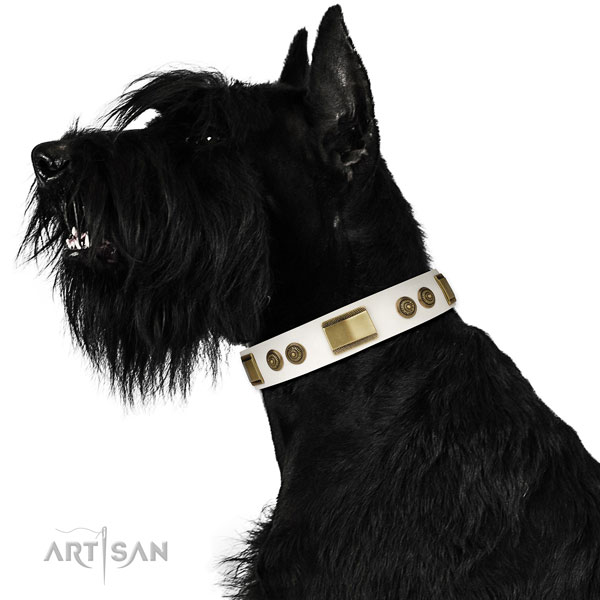 Reliable basic training dog collar of leather