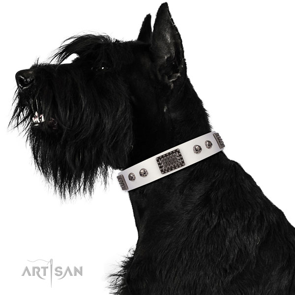 Adjustable full grain genuine leather collar for your attractive doggie