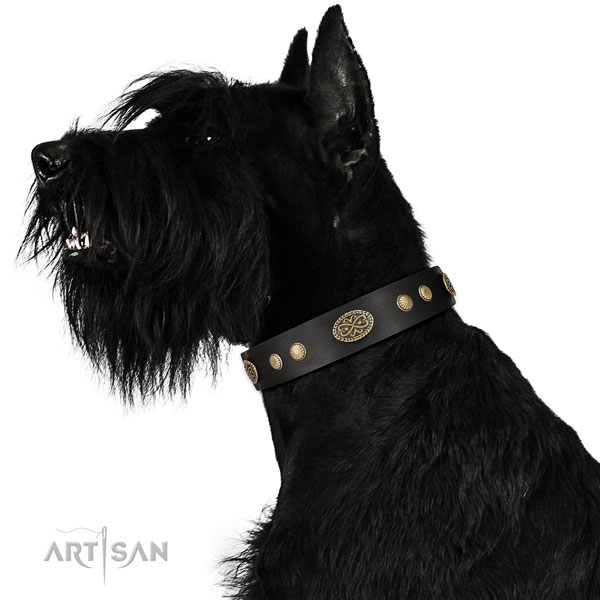 Strong D-ring on leather dog collar for daily use